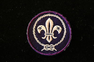 BOY SCOUTS OF AMERICA - WORLD SCOUTING CREST PATCH - BSA - CUB SCOUT - OFFICIAL