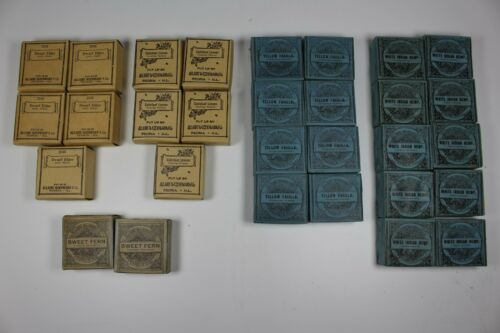 Allaire Woodward Antique Herbal Medicines - 1900s - Quack Apothecary - Lot of 31