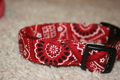 Red Bandana Paisley Dog & Cat Collars & Martingales & Leashes