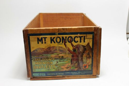 Old Mt Konocti Mountain Bartlett Pear Fruit Crate Box Indian Scene Paper Label