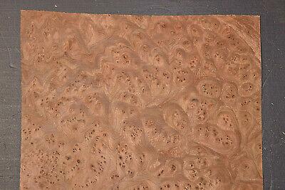 Elm Burl Raw Wood Veneer Sheets 9.5 X 12 Inches 142nd 8633-46