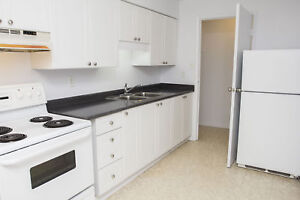 Spacious 2 Bed - Southwood/St Andrews - near Westgate Center!