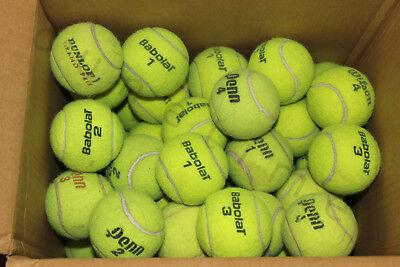 30 Used Good Indoor Hard Court Tennis Balls Dog Toys Schools Penn Wilson Babolat