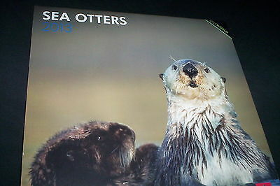 SEA OTTERS 2013 Wall Calendar Cute Photos Georgienne Bradley~New in Shrinkwrap on Rummage