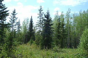 7.68 ACRE LOT $43,900 - OWNER WILL FINANCE