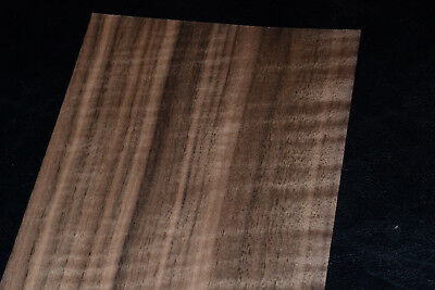 Walnut Raw Wood Veneer Sheets 5 X 39 Inches 142nd Thick   E7318-10