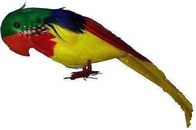 Papagei mit echten Federn 30 cm Beach Party Kostümzubehör Pirat Hawaii Deko