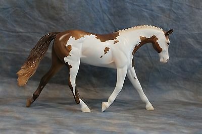 PETER STONE PEBBLES GLOSSY  PINTO WARMBLOOD~GORGEOUS
