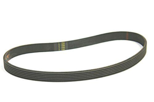 Advance Brush Belt 56407466  V-ribbed Flat Adgressor Aquaride