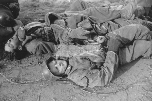 WWII photo The bodies of two SS soldiers killed in the Benvire area 1263