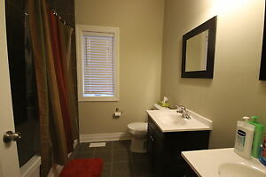 everything included student rental- quiet mature home London Ontario image 3