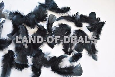 400+ Black turkey feathers loose small feathers plumage feather bulk 2 oz