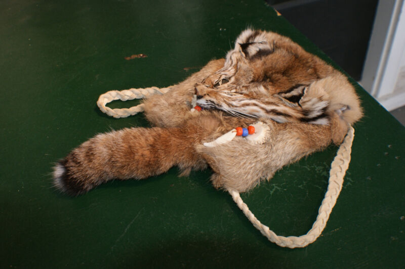 Bobcat bag real fur face tail. Deer leather strap pouch approx 5.5 deep 6.5 wide