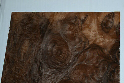 Walnut Burl Raw Wood Veneer Sheets 11 X 11 Inches 142nd Thick  6838-50