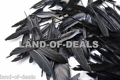 500 BLACK duck feathers, small loose duck feathers hand selected, wholesale bulk