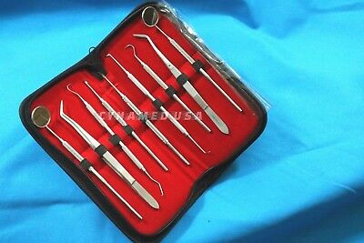 German Dental Scaler Pick Stainless Steel Tools With Inspection Mirror Set 9 Pcs