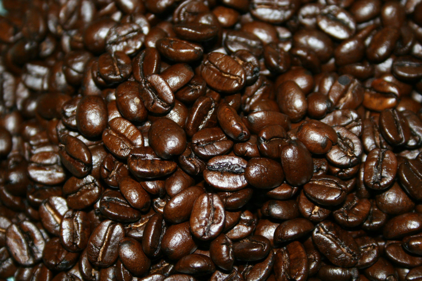 Sumatra Coffee Beans, Organic Fresh Roasted Daily Whole Beans  2 - 1 Pound Bags