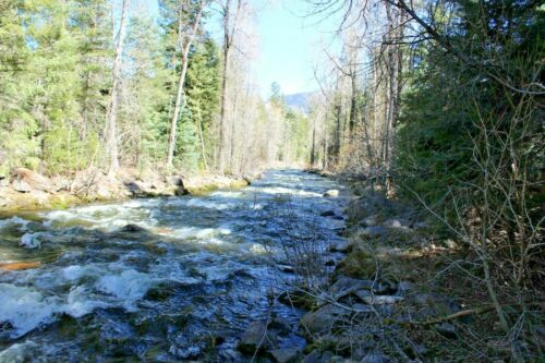 Colorado Gold Mine Silver San Juan Creek Placer Mining Claim Au Ag Sluice