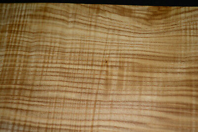Olive Ash Raw Wood Veneer Sheets 5.5 X 34 Inches 142nd Thick   6773-39