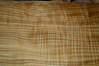 Olive Ash Raw Wood Veneer Sheets 5 X 26 Inches 142nd Thick   6774-2