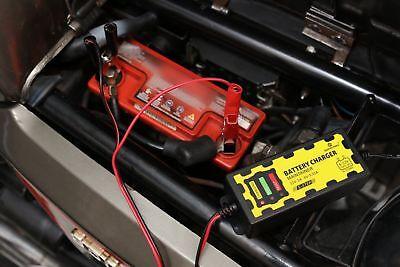Caricabatterie Mantenitore Batteria 6V 12V 1A Con Cavetti Per Auto e Moto