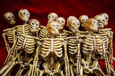 Small Plastic Skeletons (12 Lot Miniature Dollhouse Plastic Skeletons 6