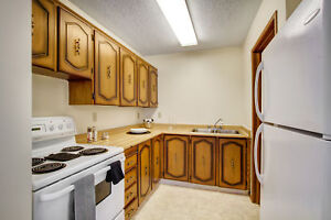 Pet friendly suites in Brentwood Heights! In suite laundry!