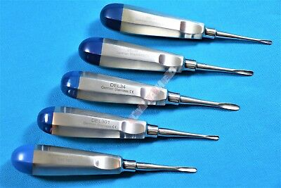 5 Pcs Straight Dental Surgery Extracting Luxating Apical Root Tip Elevator