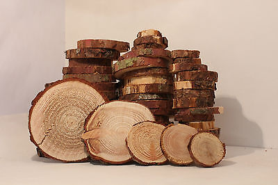 LÄRCHE Restposten Holzscheiben Astscheiben Baumscheiben Floristik 50St. 2-10 cm  ()