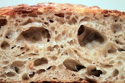 """SOURDOUGH STARTER from the """"WHARF"""" in SAN FRANCISCO yeast many recipes and tips"""