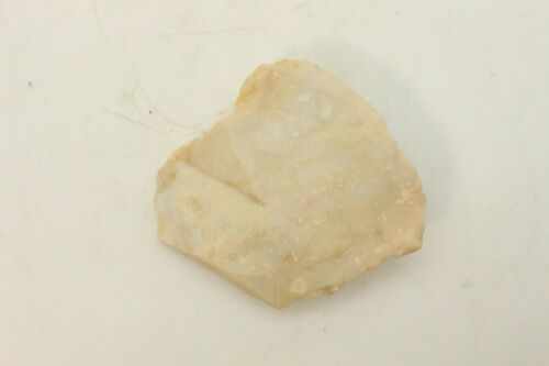 Ancient Italian Neolithic Stone Tool - 9,000 - 4,000 Years Old - Italy