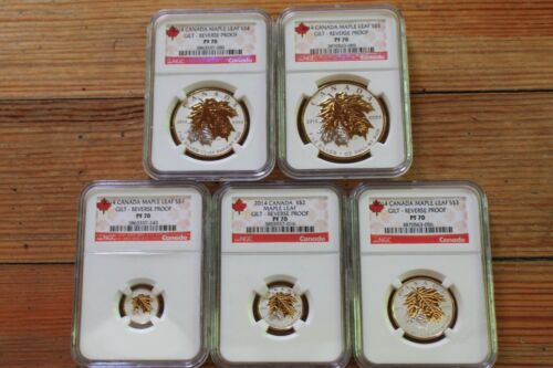 2014 Canada Silver Maple Leaf Gilt Reverse Proof NGC PF70 5 Coin Set