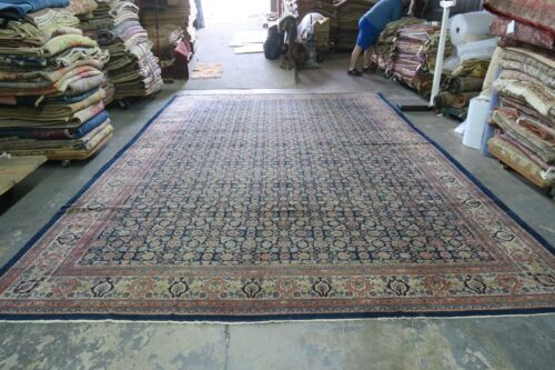 Antique India Agra Herati Area Rug Hand Knotted Wool 10