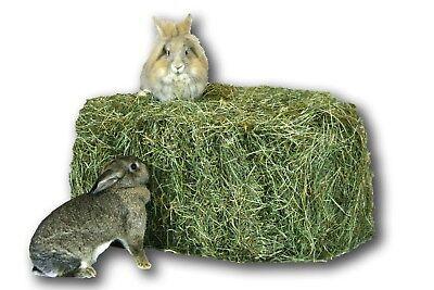 Heu 15kg Heuballen 1.Schnitt Futter Kaninchen Meerschweinchen Pferd Deko Scheune