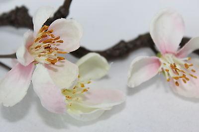 Apfelbluete-Style-Accessoires