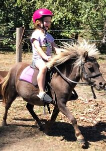 Charity horse trail ride