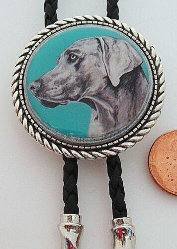 Weimaraner Dog Classic Bolo Tie