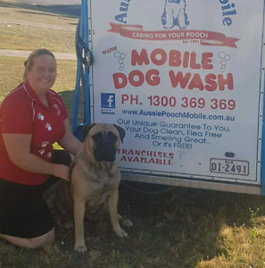 Mobile dog wash grooming in new south wales gumtree australia free mobile dog wash grooming in new south wales gumtree australia free local classifieds solutioingenieria Choice Image