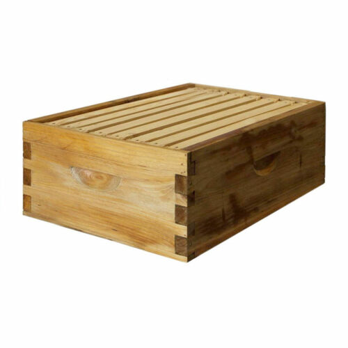 Natural Bees Wax Coated Langstroth 8 Frame Medium Box w/ Frames and Foundations
