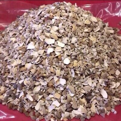 Chicken Grit 2 Kg Oyster Shell Poultry Grit Calicum Support Hens Egg Laying