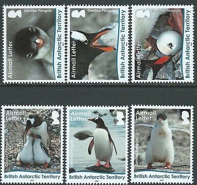 BRITISH ANTARCTIC TERRITORY 2016 PENGUIN AIRMAIL LETTER UNMOUNTED MINT, MNH