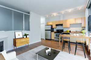 Upgraded One Bedroom + Flex For Rent at The Lex - 1249...