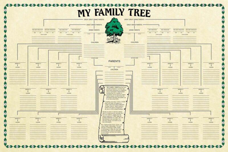 Family Tree Chart Genealogy