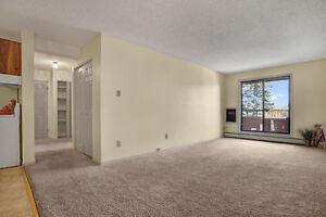 Beautiful 2 bedroom suite Free Jan. Rent.. Call 306-314-0214