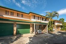 BEAUTY BY THE BROADWATER Labrador Gold Coast City Preview
