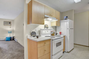 Spacious & Bright 2 Bed. In-suite Laundry & Pet Friendly!