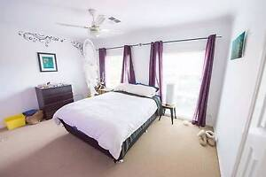 Room for rent in Mardi Mardi Wyong Area Preview