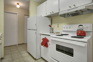 Bright & Clean 3 Bedroom Apartment! East Hill -  (306) 314-5853