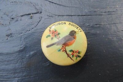 Audubon Society American Robin bird celluloid pin Bastian Bros.Co.