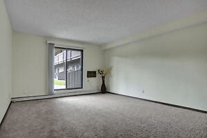 Spacious & Beautiful 2 Bdrm in Lakeview! $500 Off First Month